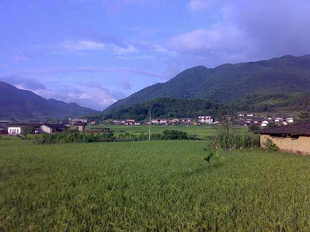沙井镇洪田山风景